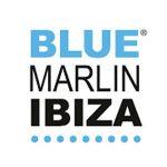 bluemarlinibiza.com